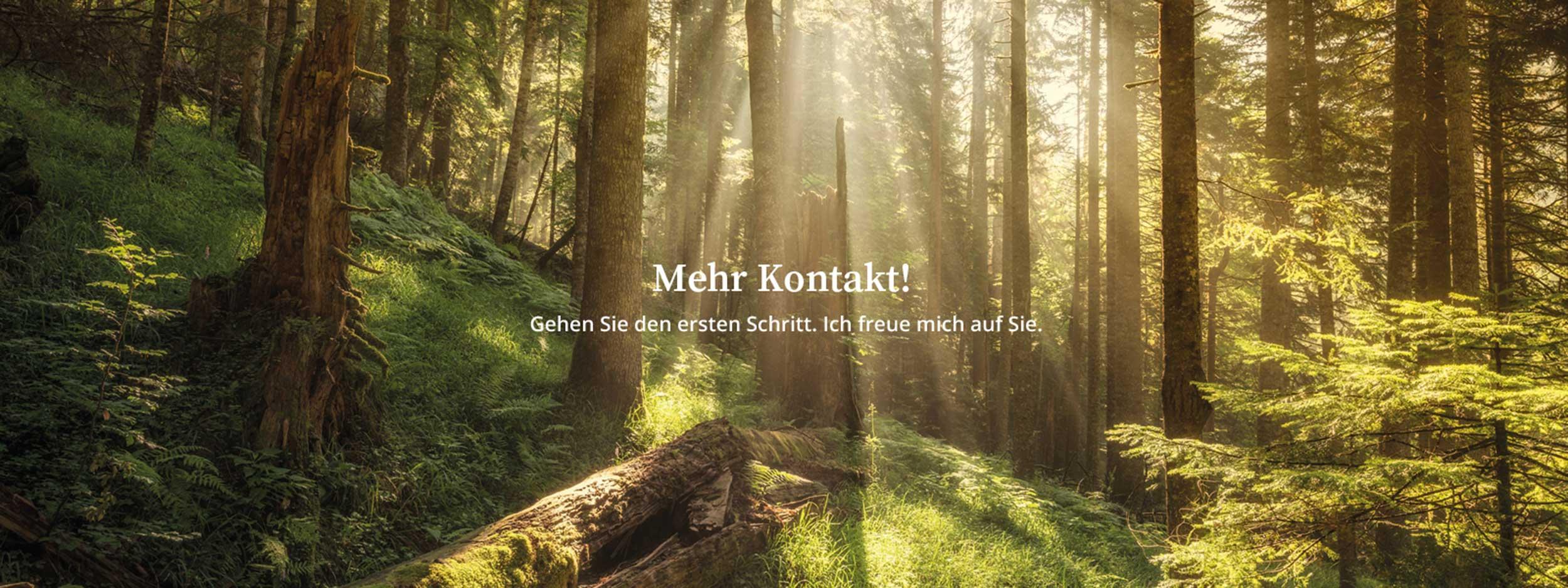 kontakt_schrift-neu